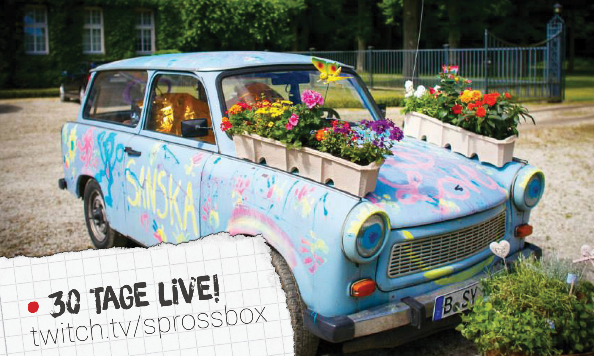Trabbi mit Sprossbox